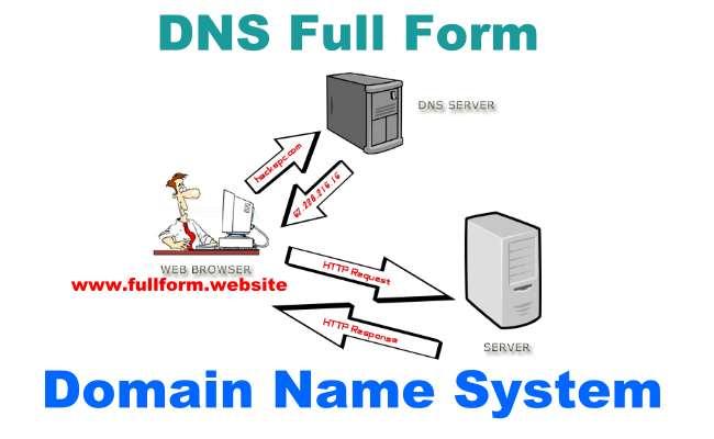 DNS full form